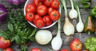Mengenal Lebih Jauh Teknologi Dalam Pertanian Organik