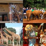 Nairobi Local Road Excursions