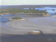 パチンコ島