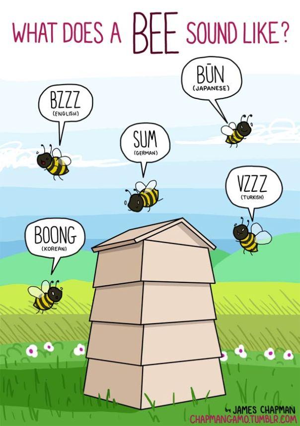 sonido abejas