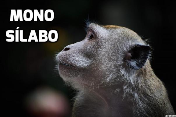 monosilabo