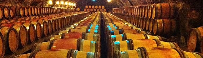 Australian wine consultancy