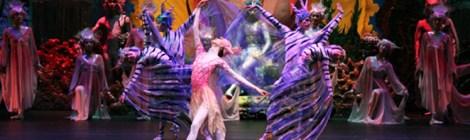 【公演レビュー】古今東西の細やかな調和、ユニバーサル・バレエ「沈清」