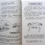 spiruline-pour-tous-extrait-du-livre-2