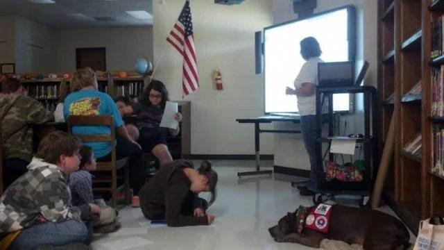 elle il pitbull ascolta leggere i bambini