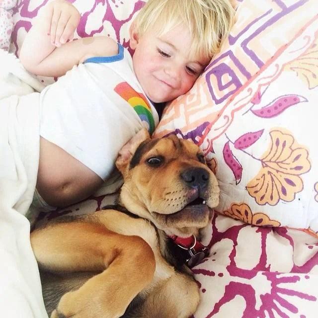 bimbo e cane dormono 2
