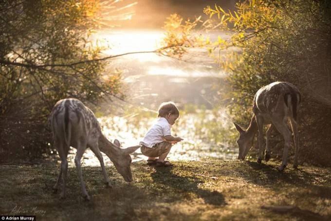 bimbo nel parco con cervi