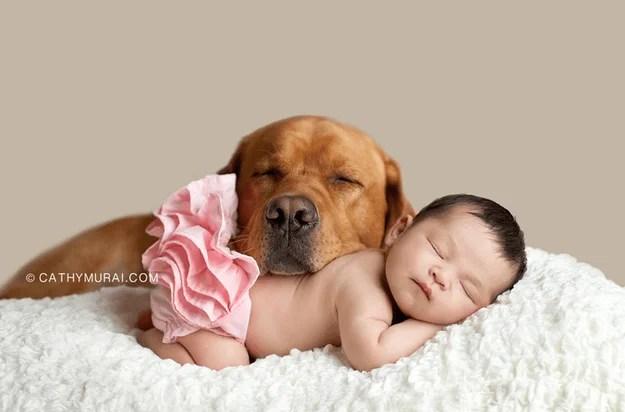 bimba con tutu rosa e cane