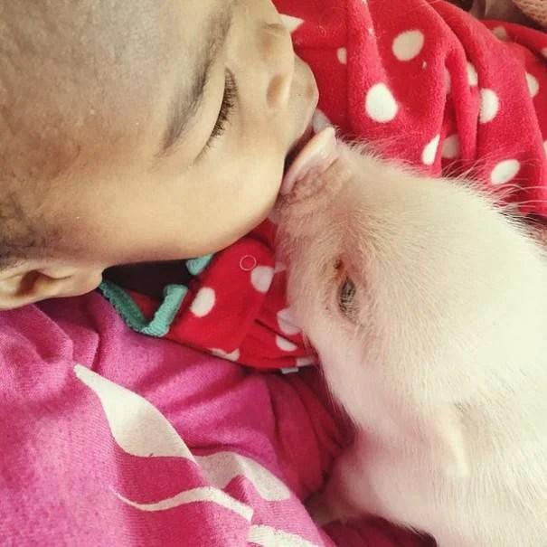bacio bimba e maiale