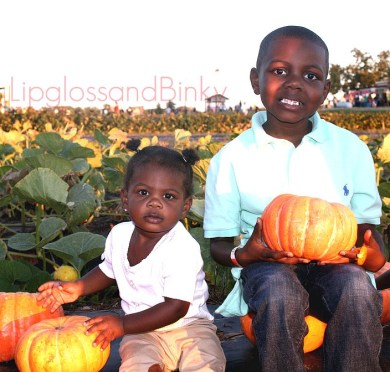 2011 Pumpkin Patch