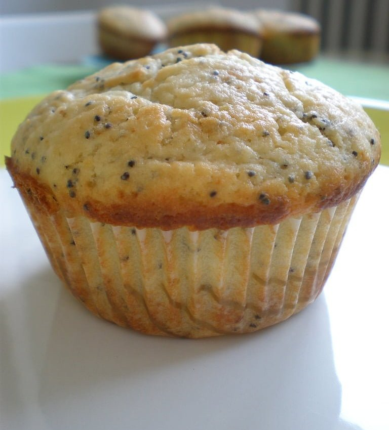 lemon poppy seed muffins recipe february 25 2016 lemon poppy