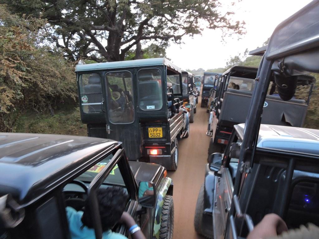 embouteillage parc yala