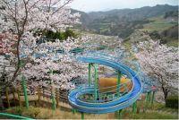 徳島県の桜の名所2015!開花予想と駐車場情報