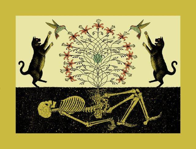 Symbiosis, Dan McCarthy