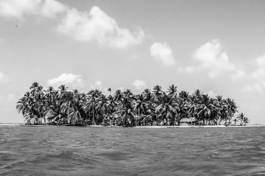 Kokosnussplantage, Guna Yala/San Blas, Panama (c) Veronika C. Dräxler