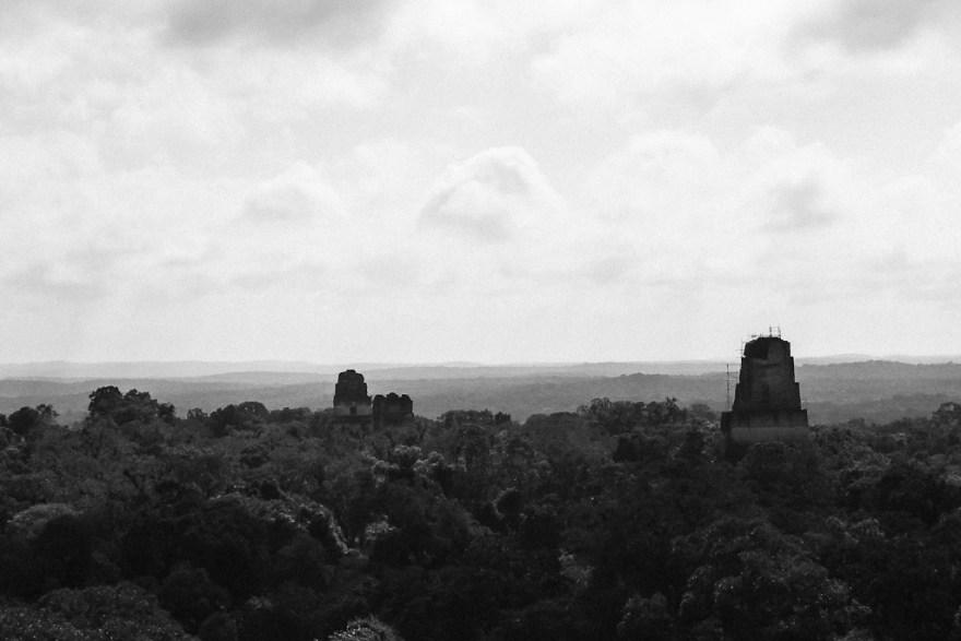 Sicht vom höchsten Mayatempel, Tikal, Guatemala (c) Veronika C. Dräxler
