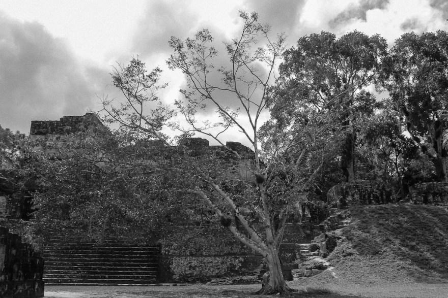 Mayabehausungen, Tikal, Guatemala (c) Veronika C. Dräxler