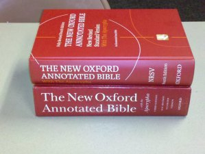 Review: New Oxford Annotated Bible 4th Edition