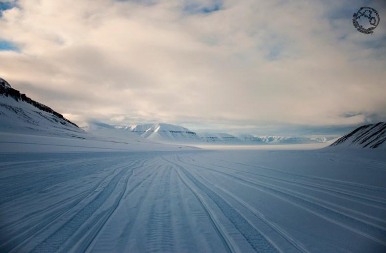 Svalbard 8