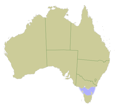 Bass Strait   Wikipedia