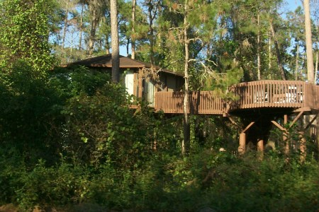 disney world treehouse villas by ckramer