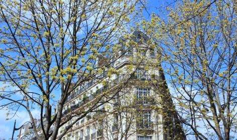 Psychologue Paris 6 Rue Fleurus