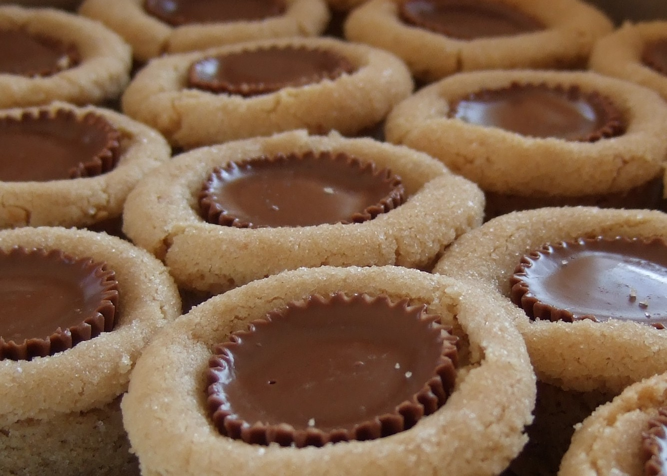 peanut butter cup is a molded chocolate candy with a peanut butter ...