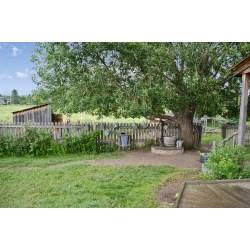 Small Crop Of Backyard Living Source