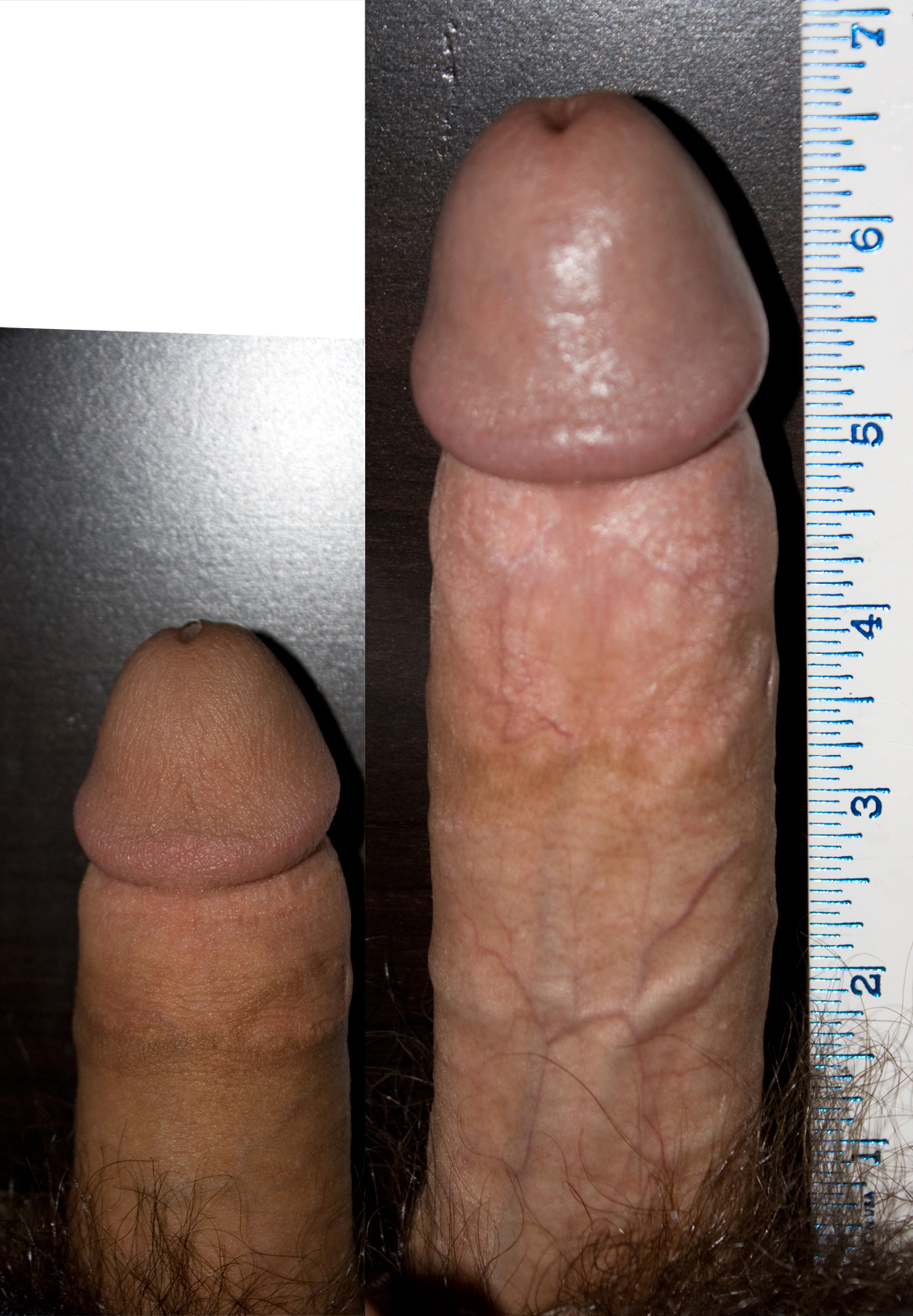 What is a normal sized cock assured