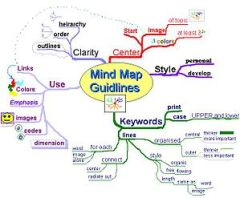 Mind map of the mind map guidlines.