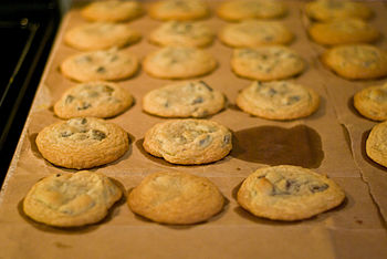 350px Missing chocolate chip cookie   it wasn%27t me%21 Gratitude Monday:  Littles