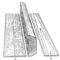 Sketch of A Quarter-sawn & B flat-sawn