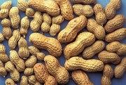 ARS peanuts