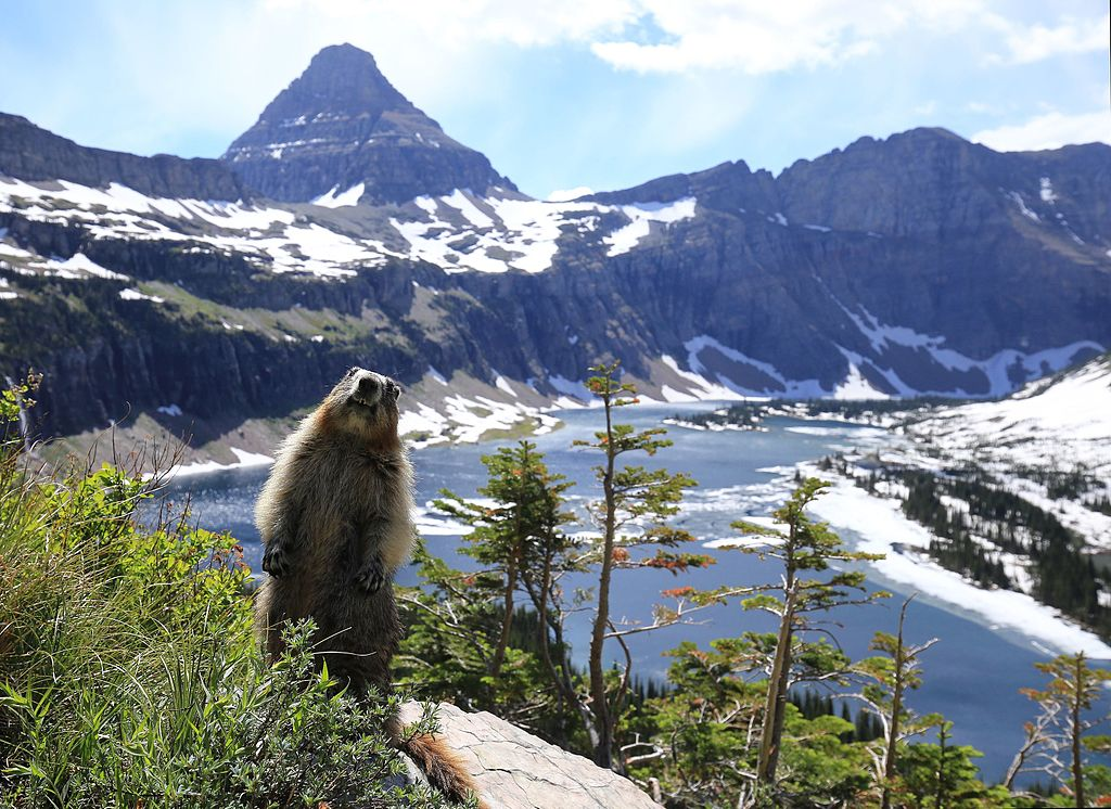 2015-06-19 Glacier National Park (U.S.) 8625