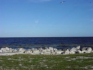 English: View looking across Lake Okeechobee f...