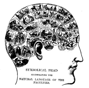 A typical 19th century phrenology chart. Phren...
