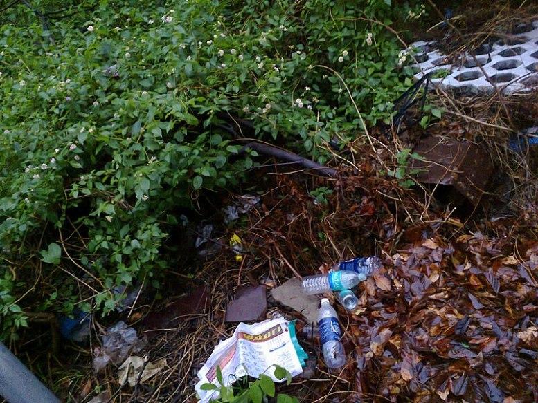File:Plastic wastes.jpg