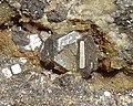 Acanthite-Sphalerite-258446.jpg