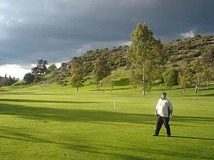 Golf Rays