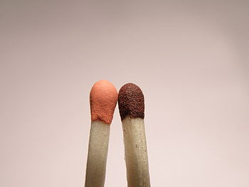 English: Macrophoto of two match heads. Česky:...