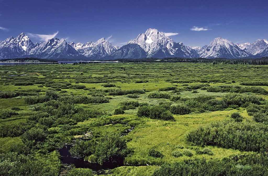 Willow Flats area and Teton Range in Grand Teton National Park