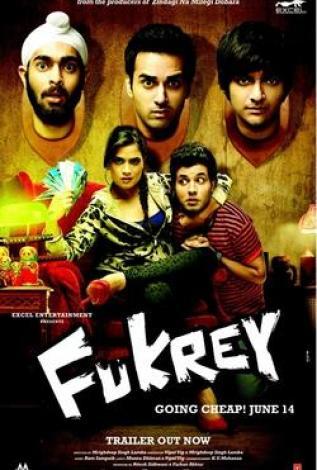 Download Fukrey (2013) Hindi Movie BRRip 375MB 480P ESubs