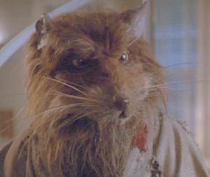 Splinter in a scene from Teenage Mutant Ninja ...