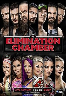 WWE Elimination Chamber 2018 Poster.jpeg