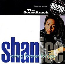 Shanice-Saving Forever For You-(9362-40738-2)-CDM-FLAC-1992-WRE Download