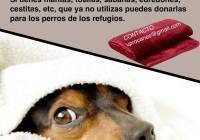 UPROCANES LANZA LA II CAMPAÑA DE RECOGIDA DE MANTAS