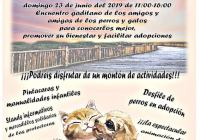 2ª JORNADA DE LOS TORUÑOS POR LOS PERROS Y LOS GATOS
