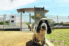 UPROCANES RECLAMA PARQUES CANINOS