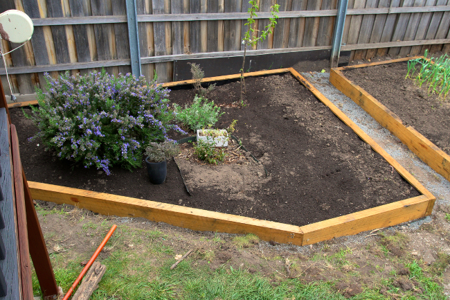 herb-bed-built