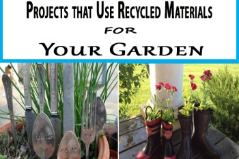 6-Projects-that-Use-Recycled-Materials-for-Your-Garden-350x232